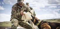 Soldier and Military Dog