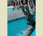 A cadet braces himself and holds his breath as he makes the 5 meter plunge into the CSUF swimming pool while blindfolded.