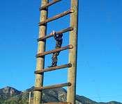 Cadets learn to push themselves and overcome obstacles in training and in life.